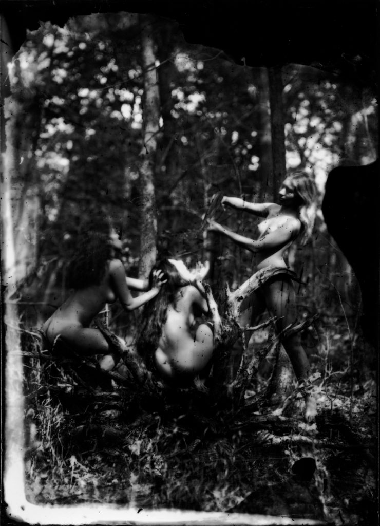 Earth Magic - 2012 Silver gelatin print from wet plate collodion negative