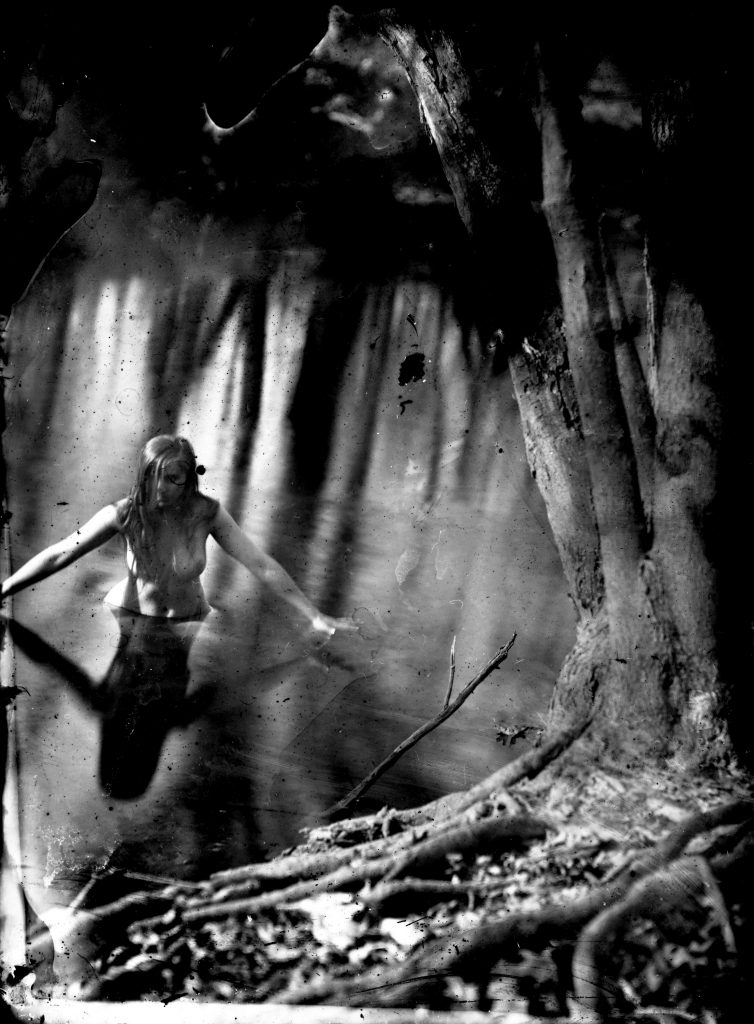 Earth Magic - 2013 Silver gelatin print from wet plate collodion negative